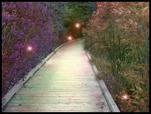fairy_path