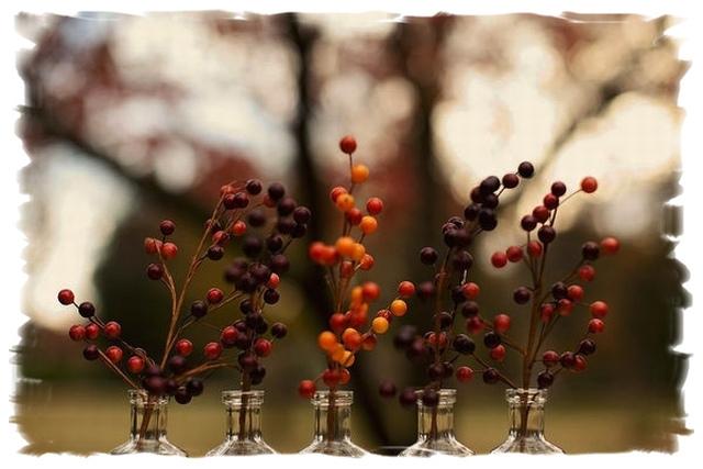 autumn17b
