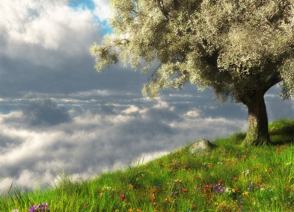spring_brings_magical_healing