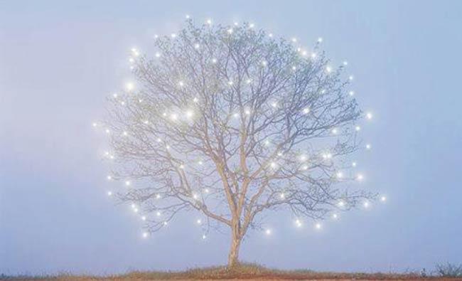 nashville_christmas_dreams1