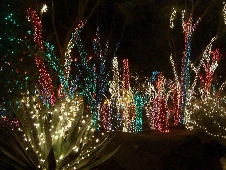 christmas-palm1